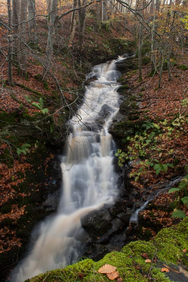 Waterfall (729)