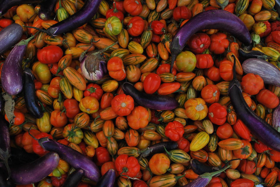 Colourful fall vegetables