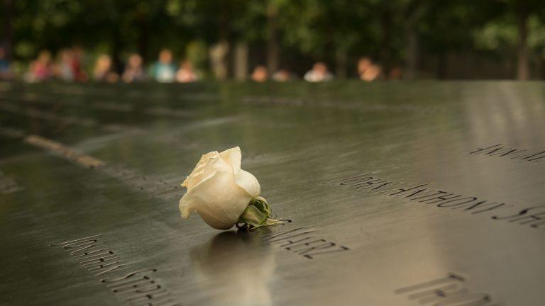 Rose at 9/11 Memorial (570-4)