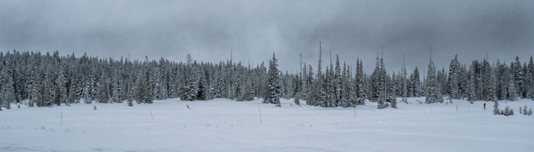 Winter at Mt Washington