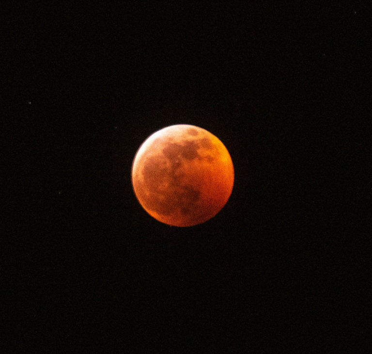 Moon Eclipse (150)