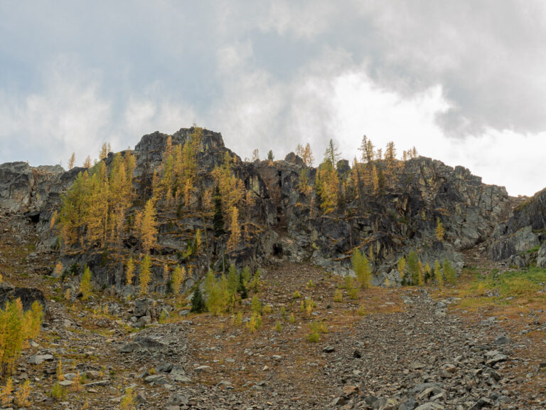 Looking up to the Rim from Quiniscoe Lake