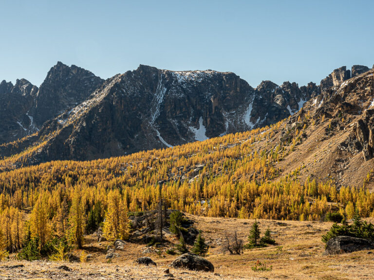 Looking towards the Rim from near Ladyslipper Lake