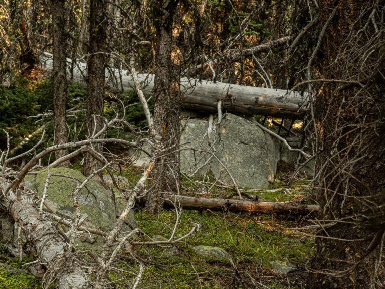Massive rocks with fallen trees
