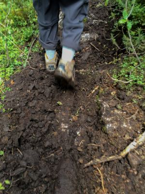 Following The Horses - Mud On The Trail (033)
