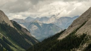 Spray River Valley from Mount Currie (183)