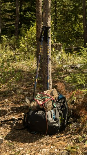 Daypack and Poles With Boots (299)