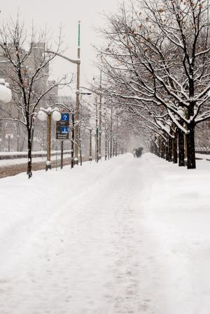 Icy Street (997)
