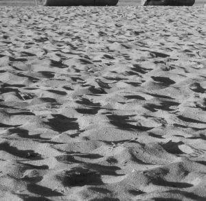 Sand Dunes, English Bay