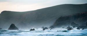 Oregon Coast (1240)