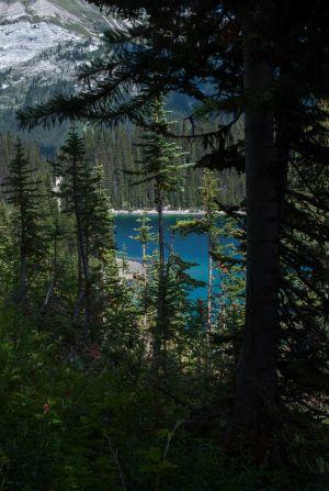 Leman Lake (14)