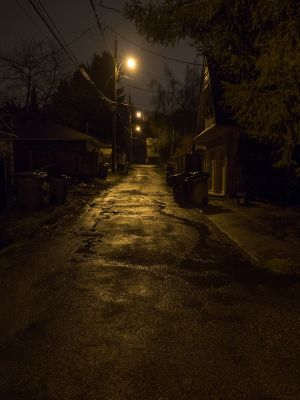 The Back Lane (1501118)
